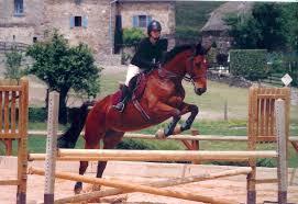 de la pratique du saut d'obstacles: ...