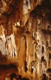 Grotte et Parc de la Draye blanche